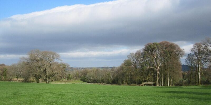 Online Lecture: 'Monksgrange: a trefoil of house, landscape and garden'