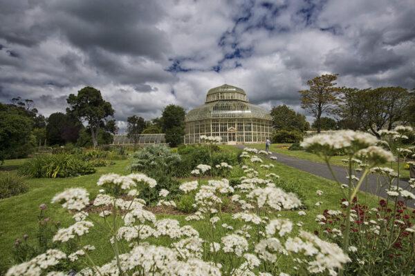 In conversation with Matthew Jebb, National Botanic Gardens, Dublin