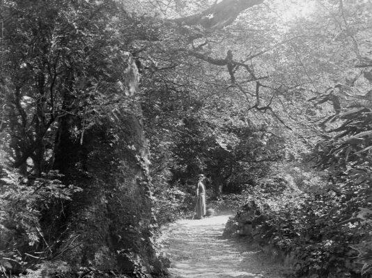 The Irish Country House Garden 1650-1950: Digging New Ground